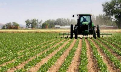 Italy to invest in Nigeria's agric sector