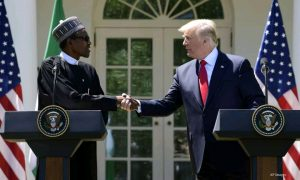 Trump and Buhari Shares Ideas on how to combat COVID-19
