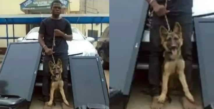 Thief Arrested For Stealing Home Gadgets Including Security Dog
