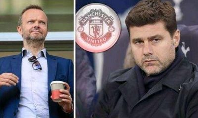 Ed Woodward Contacts Pochettino